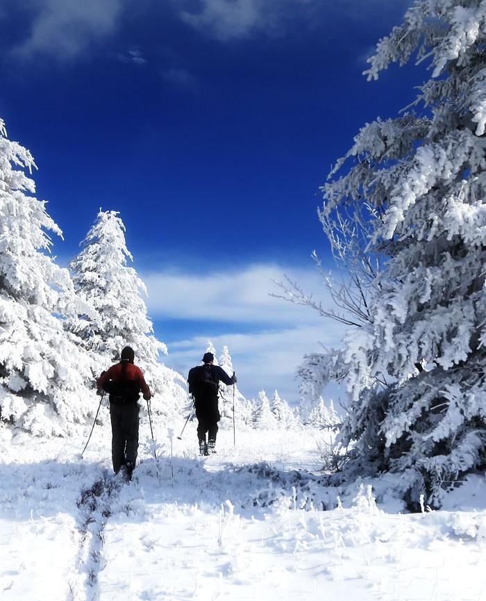 attractions--750x865-winter-fun