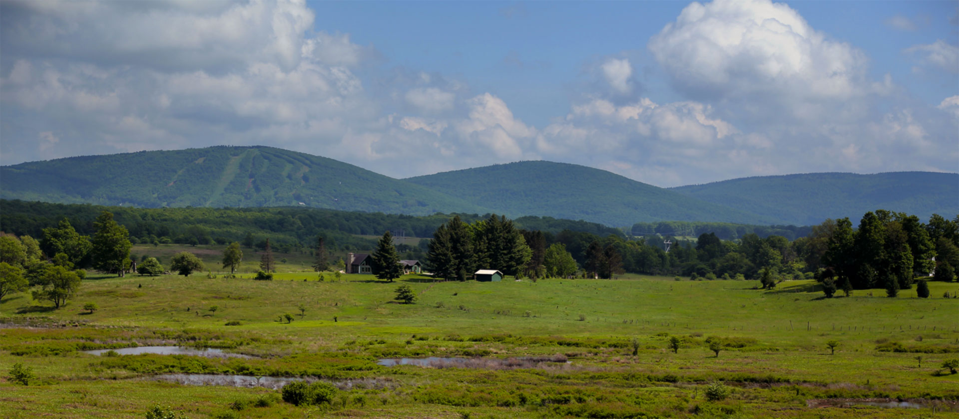 canaan valley west virginia lodging black bear resort
