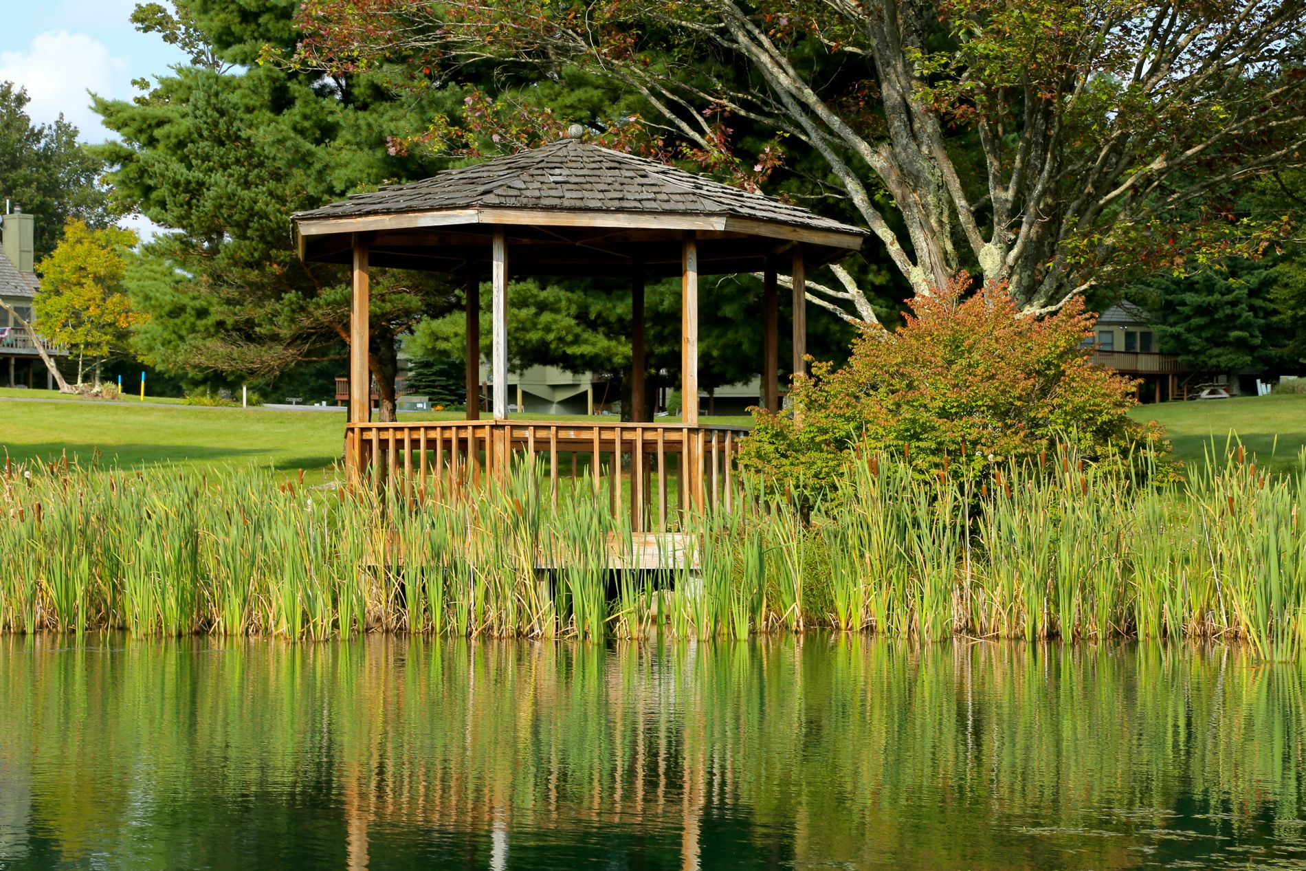 Catch (and release!) fish in one of our ponds or relax in the gazebo