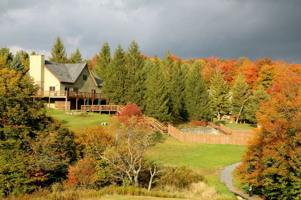 Cabins in Canaan Valley