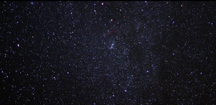 stars-davis-victoria-weeks